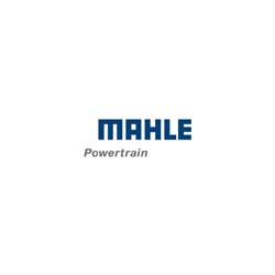 Mahle Powertrain Ltd.